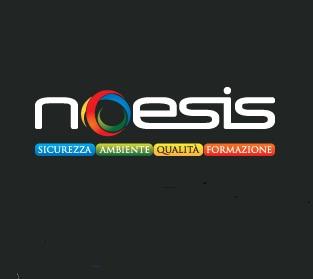 noesis group