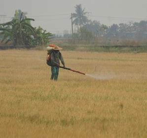 protezione lavoratori in agricoltura