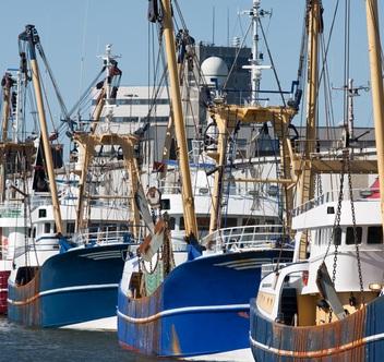 sicurezza lavoratori del mare