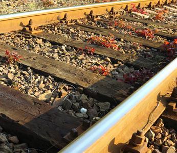 Sicurezza lavoratori rete ferroviaria