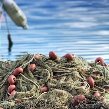 sicurezza settore ittico