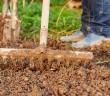 legge-contrasto-sfruttamento-agricoltura