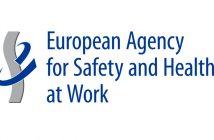 progetto-pilota-lavoro-sicuro-visualizzazione-online