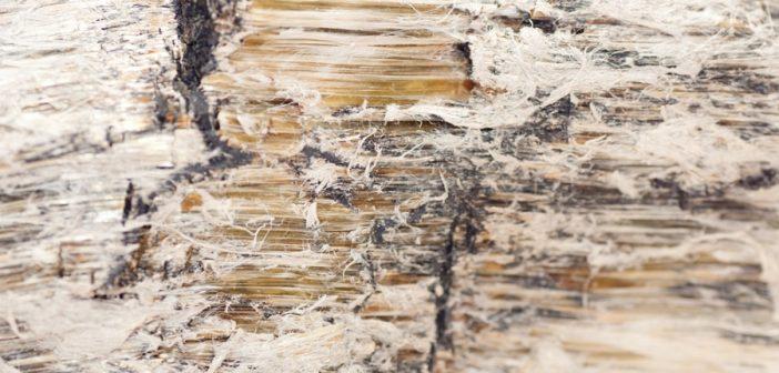 circolare-inail-fondo-amianto-porti