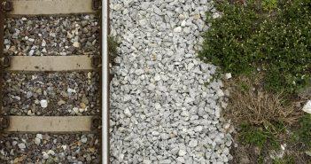 decreto-fitosanitari-strade-ferrovie