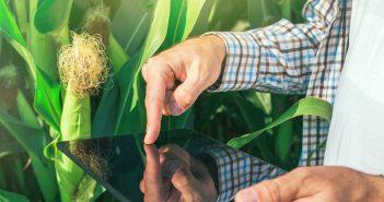 download-codice-isi-agrocoltura