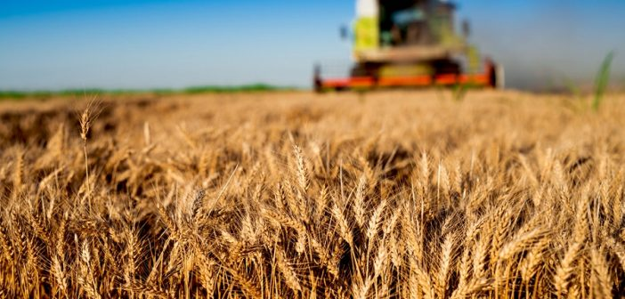 volume-inail-tutela-agricoltura