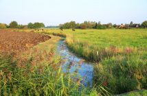 contaminazione-idrica-da-fitofarmaci