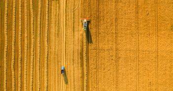 polizze-assicurative-agevolate-agricoltura