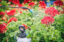 regolamento-uso-non-professionale-fitosanitari