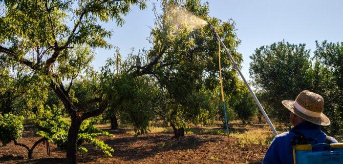 Uso in sicurezza dei prodotti fitosanitari, volume Inail
