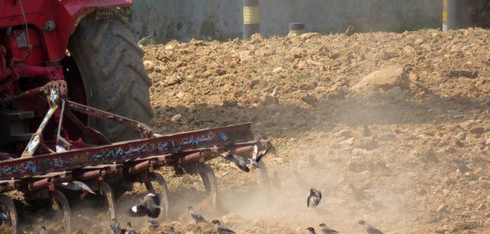 bando-inail-isi-agricoltura-2020