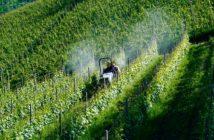 fitosanitari-ministero-salute-regolamento-clp