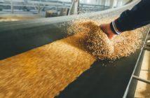 regolamento-efsa-sicurezza-alimentare