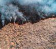 rischio-incendi-agricoltura