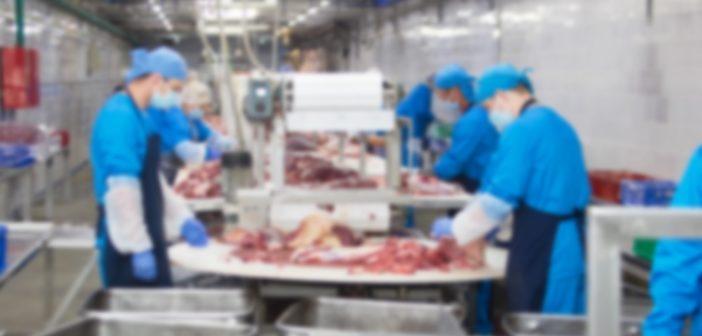 prevenzione-covid-impianti-allevamento-agricoltura-macellazione
